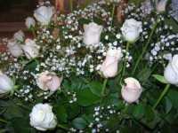 Chiesa Maria SS. delle Grazie - interno: rose - 12 settembre 2009   - Isola delle femmine (3477 clic)