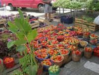 mercato di frutta e verdura in via Marina di Petrolo: in evidenza cesti di pomodori - 21 luglio 2007   - Castellammare del golfo (2667 clic)