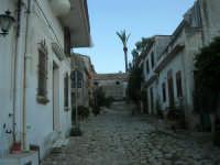 per le vie del piccolo borgo - 8 maggio 2007  - Scopello (755 clic)