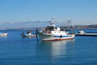 il golfo di Castellammare dal porto - 21 gennaio 2008  - Castellammare del golfo (693 clic)