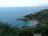Riserva Naturale Orientata Zingaro - Cala Tonnarella dell'Uzzo e Golfo di Castellammare - 24 febbraio 2008   - Riserva dello zingaro (2250 clic)