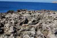 Golfo del Cofano: mare stupendo - 24 febbraio 2008   - San vito lo capo (559 clic)