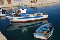 al porto - 21 gennaio 2008  - Castellammare del golfo (598 clic)