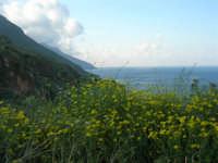 panorama - 1 maggio 2007  - Riserva dello zingaro (1201 clic)