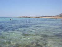 Golfo del Cofano - mare stupendo - 8 agosto 2008   - San vito lo capo (555 clic)