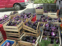 mercato di frutta e verdura in via Marina di Petrolo: in evidenza le melanzane - 21 luglio 2007   - Castellammare del golfo (2122 clic)