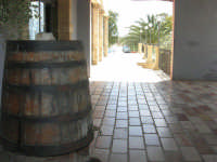 C/da Digerbato - Tenuta Volpara - 27 aprile 2008   - Marsala (777 clic)
