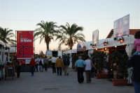 Cous Cous Fest 2007 - Al Waha (in arabo oasi nel deserto) - 28 settembre 2007  - San vito lo capo (1150 clic)