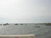 Riserva delle Isole dello Stagnone - 24 settembre 2007  - Marsala (837 clic)