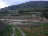 Fiume Caldo - segni dello straripamento - 8 febbraio 2009  - Calatafimi segesta (2434 clic)