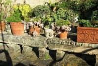 antica terrazza: particolare - 4 marzo 2007  - Bagheria (1688 clic)