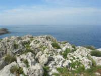 Capo San Vito - la costa rocciosa e l'azzurro del mare - 10 maggio 2009   - San vito lo capo (1566 clic)