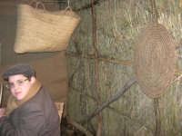 Presepe Vivente presso l'Istituto Comprensivo A. Manzoni, animato da alunni della scuola e da anziani del paese - 20 dicembre 2007   - Buseto palizzolo (941 clic)