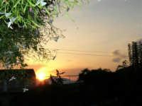 Gelsomino all'alba - 29 settembre 2005  - Alcamo (1790 clic)