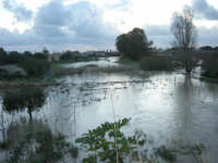 fiume straripato dopo le abbondanti piogge della notte precedente - 1 febbraio 2009   - Marsala (4660 clic)