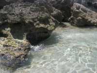 Golfo del Cofano - 15 agosto 2009   - San vito lo capo (1417 clic)