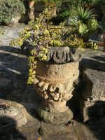 antica terrazza: particolare - 4 marzo 2007  - Bagheria (1633 clic)