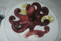 polpo bollito presso la Spaghetteria - Frutti di Mare da Giovanni - 6 luglio 2007  - Balestrate (13326 clic)