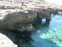 Golfo del Cofano: mare stupendo - 24 febbraio 2008   - San vito lo capo (630 clic)