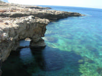 Golfo del Cofano: mare stupendo - 24 febbraio 2008   - San vito lo capo (549 clic)