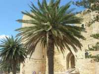 Castello Arabo Normanno - 28 giugno 2009  - Salemi (1800 clic)
