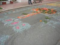 Festa di li Schietti - ciò che resta dell'infiorata nell'ultimo giorno della festa - 23 marzo 2008   - Terrasini (2287 clic)