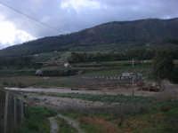 Fiume Caldo - segni dello straripamento - 8 febbraio 2009  - Calatafimi segesta (2671 clic)