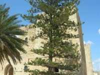 Castello Arabo Normanno - 28 giugno 2009  - Salemi (1724 clic)
