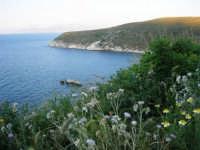 la costa tra Castellammare e Guidaloca - 8 maggio 2007  - Castellammare del golfo (767 clic)