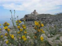 Capo San Vito - Torre dell'Usciere, detta Sciere (torre costiera di avvistamento per la difesa dai pirati) - 10 maggio 2009  - San vito lo capo (1753 clic)