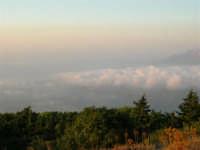 Panorama dal Monte Bonifato - 19 luglio 2005  - Alcamo (1243 clic)