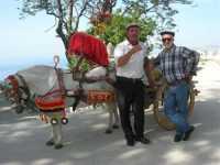 folclore: cavallo bardato di un carretto siciliano e . . . - 22 maggio 2009   - Erice (4567 clic)