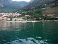 al porto - 8 maggio 2007  - Castellammare del golfo (650 clic)