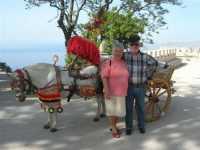 folclore: cavallo bardato di un carretto siciliano e . . . - 22 maggio 2009   - Erice (4362 clic)