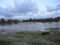 campi allagati dopo la pioggia della notte precedente - 1 febbraio 2009   - Marsala (4882 clic)