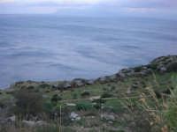 panorama - 1 gennaio 2009  - Riserva dello zingaro (3050 clic)
