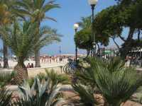 giardino pubblico e spiaggia - 15 agosto 2009   - San vito lo capo (1713 clic)