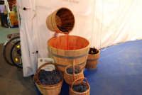 Cous Cous Fest 2007 - Expo Village - itinerario alla scoperta dell'artigianato, del turismo, dell'agroalimentare siciliano e dei Paesi del Mediterraneo: vendemmia - 28 settembre 2007   - San vito lo capo (760 clic)
