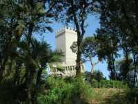 dal Balio Torre medievale - 22 maggio 2009  - Erice (2586 clic)