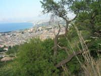 panorama - 12 giugno 2007  - Castellammare del golfo (691 clic)