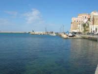 porto e castello - 23 marzo 2008  - Castellammare del golfo (684 clic)