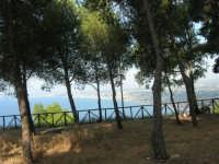 uno sguardo sul golfo dall'area attrezzata del Belvedere - 12 giugno 2007  - Castellammare del golfo (650 clic)