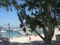 vista sul porto - 29 luglio 2009  - San vito lo capo (958 clic)