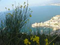 panorama della città e del golfo - 12 giugno 2007   - Castellammare del golfo (676 clic)