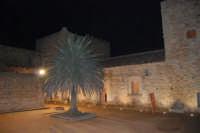 Castello arabo normanno - cortile interno - 2 gennaio 2009  - Salemi (2488 clic)