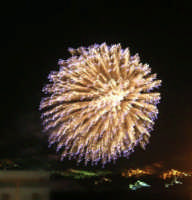 Festeggiamenti in onore di Maria SS. dei Miracoli - Patrona di Alcamo - C/da Sasi - Spettacolo di Giochi Pirotecnici - 21 giugno 2006    - Alcamo (1353 clic)