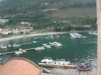 vista dal ponte: il porto - 12 giugno 2007   - Castellammare del golfo (697 clic)