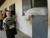 C.da Valle Nuccio - Visita al maneggio de Lo Sperone - 19 febbraio 2006   - Alcamo (1273 clic)