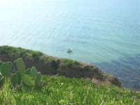 vista sul mare - 15 marzo 2009  - Balestrate (3273 clic)