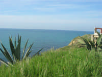 vista sul mare - 15 marzo 2009  - Balestrate (3213 clic)